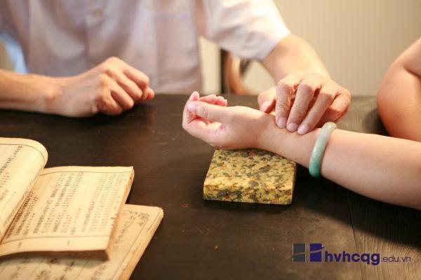 y học cổ truyền thi khối nào